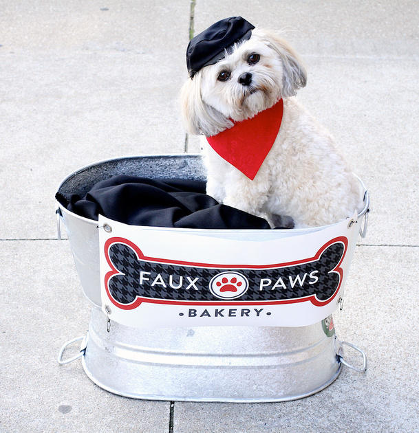 Faux Paws Dog Bakery